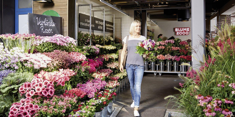 Blumenladen Detmold blume 2000 dein blumenladen bringt die natur zurück in die stadt