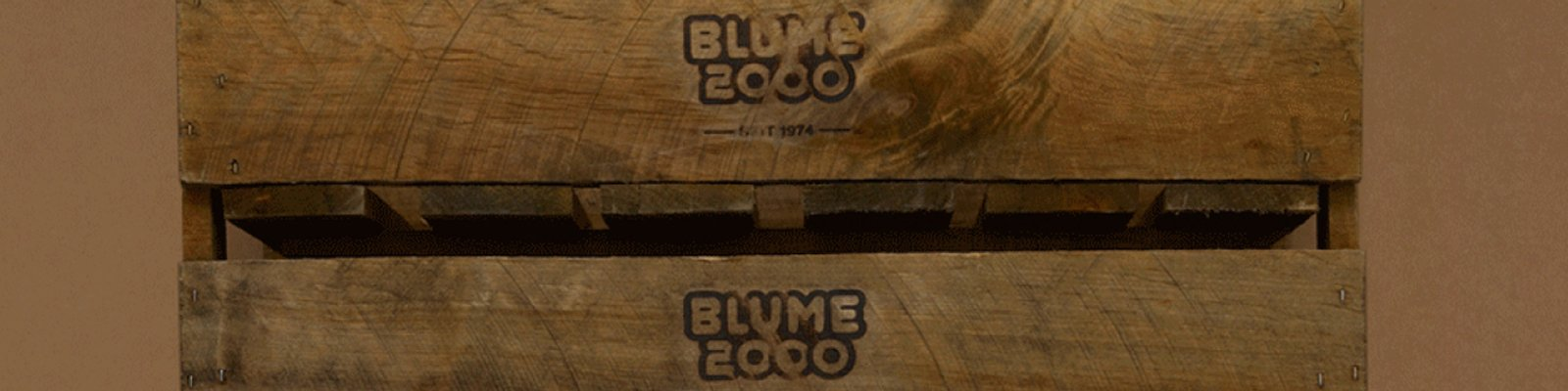 blume 2000 sucht immobilien. Black Bedroom Furniture Sets. Home Design Ideas